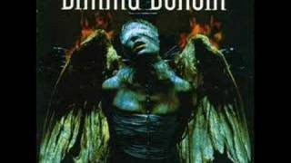 Dimmu Borgir - The Insight and the Catharsis