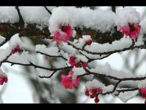 Nagori-Yuki - なごり雪 - Tuyết muộn.FLV