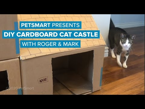 petsmart-presents:-diy-cardboard-cat-castle