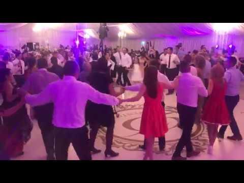 Diana Carlig live la nunta