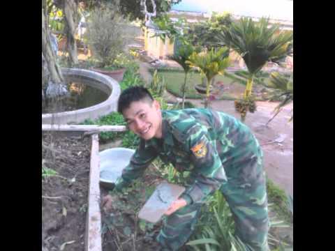 Bo doi bien phong thanh hoa