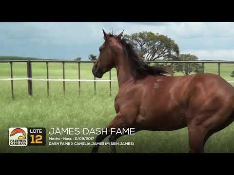 LOTE 12 - JAMES DASH FAME