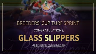 Vidéo de la course PMU BREEDERS' CUP TURF SPRINT