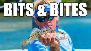 Redfish Fishing Videos and Space Coast Kingfish and IRL Clam Project
