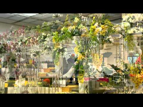 Internationale Orchideenwelt 2015 in Dresden von  Orchideengarten Karge in Dahlenburg
