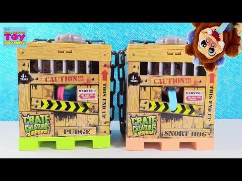 Crate Creatures Surprise Pudge Snort Hog Plush Talking Toy Review | PSToyReviews
