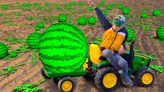 Damian and Darius Ride on Tractor farmer Outdoor Activities They Pick Watermelons