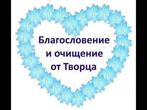 Почему православные говорят «Спаси Бог» или «Спаси Господи