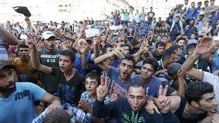 Смотрите до чего дубина Меркель довела свою Германию, за счет толерантных арабов