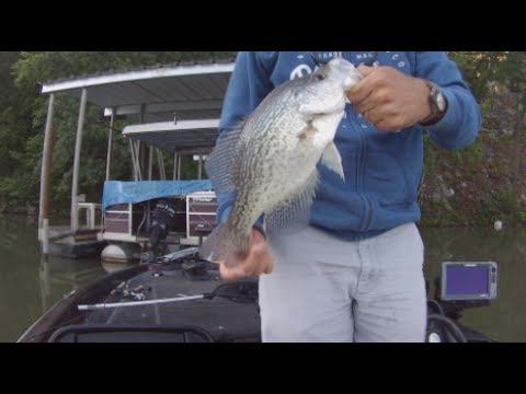 Important Tip!!! Jig Fishing For Crappie With A Cork! Arkansas Crappie Fishing