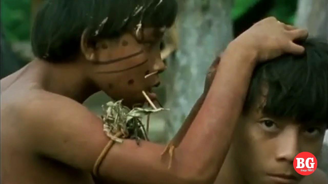 Yanomamis部落 - 生活和节日仪式 - Amazon Tribe