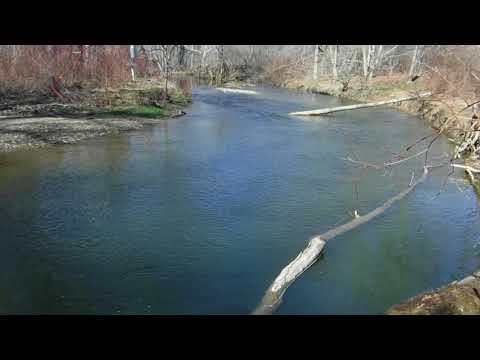 Woodcock Creek Fishing