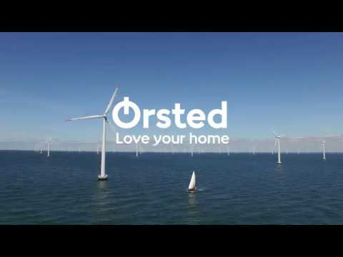 The view of green energy at Nysted Offshore Wind Farm