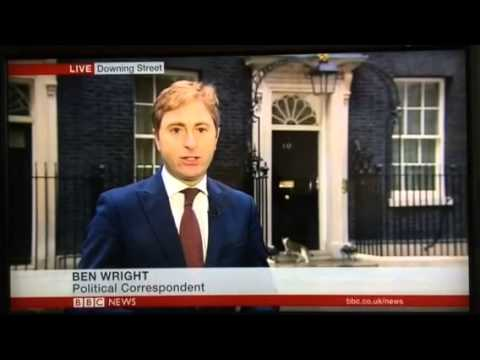 Downing Street Cat on BBC News