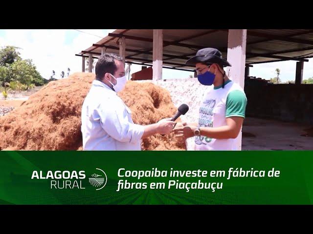 Coopaiba investe em fábrica de fibras em Piaçabuçu