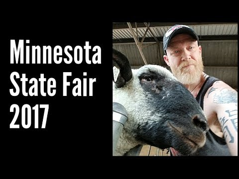 Minnesota State Fair 2017 - Swine, Sheep & Goats