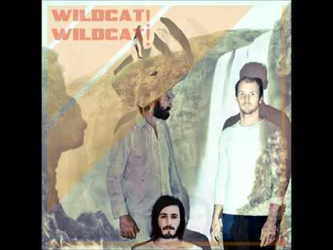 Wildcat! Wildcat! - Mr. Quiche