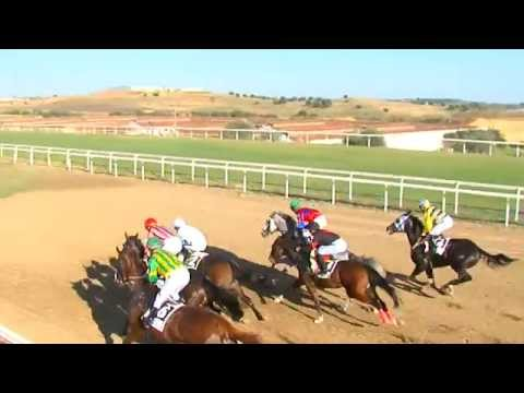Resumen, jornada 29 de octubre 2015 - Gran Hipódromo de Andalucía