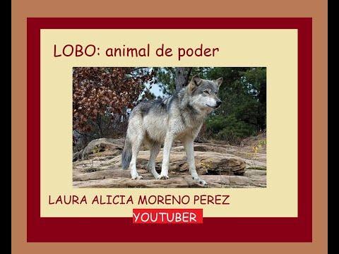 LOBO : Animal De Poder