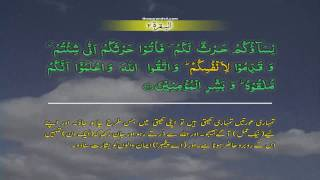 Al Baqarah 002 [223] HD Quran tilawat Recitation Learning word  By word