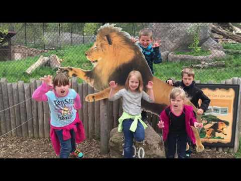 Seneca Park Zoo Field Trip