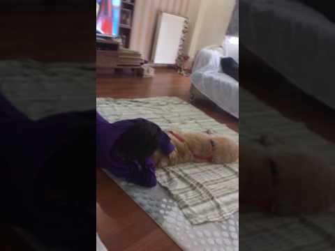 Down sendromlu kızımın hayvan sevgisi