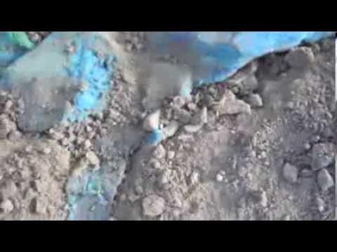Mesopotamian Water Crisis
