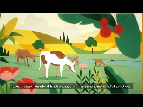 How Agroecology Helps to Build Climate Change-Resilient Livelihoods