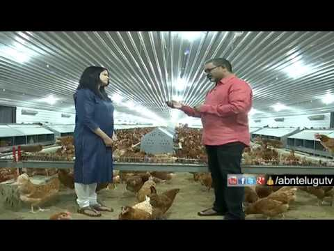 Srinivasa Hatcheries Groups | Suresh Rayudu Chitturi | Best In The Business