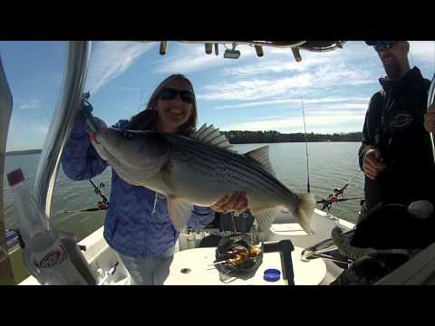 Striper Fishing Clarks Hill SC