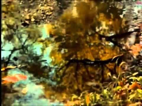 Медленно уходит осень - Анюта Шурочкина (Нюша)