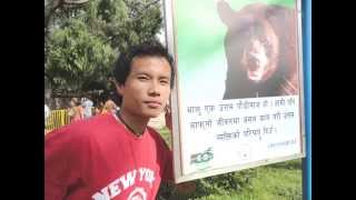 Video Timro Aankhama - New Nepali Movie - STUPID MANN(bishal) download MP3, 3GP, MP4, WEBM, AVI, FLV Maret 2018