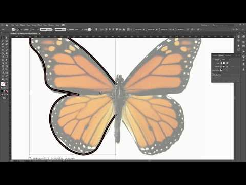How To Create Simple Flat Butterfly Shape in Adobe illustrator - Tutorial For Beginners thumbnail