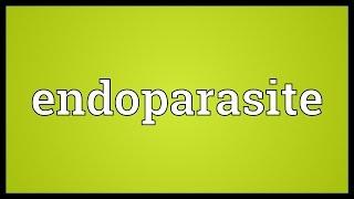 Endoparasite Meaning