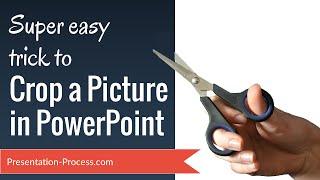 Super Truc Facile pour Rogner une Image dans PowerPoint
