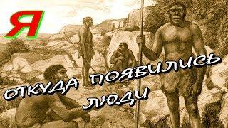 ОТКУДА ПРОИЗОШЛИ ЛЮДИ? Когда появился человек?  Как эволюция превратила обезьяну в человека?