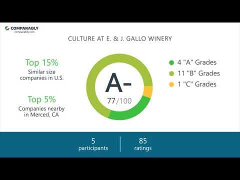 Working at E. & J. Gallo Winery - May 2018