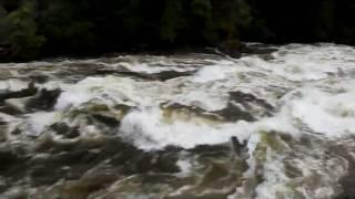 Selway Falls 2