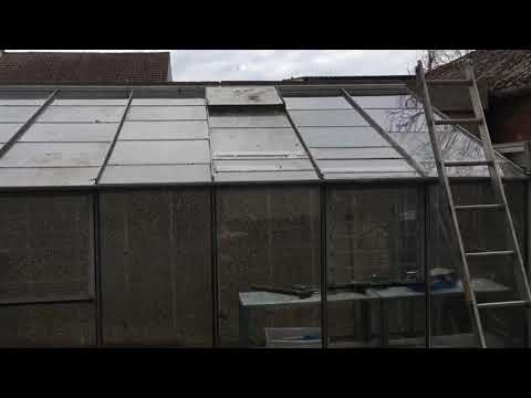 Quick view of the lean to #greenhouse