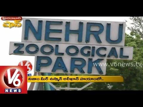 Nehru Zoological Park || Hyderabad Shaan || V6 News