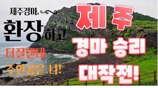 [강타쌤]#경마라이브방송 #경마예상 #금요경마 //서울…