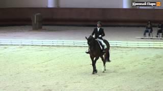 Летний Чемпионат Московской области по конному спорту для лиц с поражением ОДА