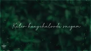 #Adai Mazhai varum lyrics song #Vaseegara song