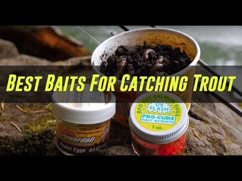 3 BEST Baits To CATCH Stocked Trout In Lakes Or Ponds