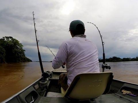 Fisgando a Piraiba  - 1,56m - Laulau Fishing #3
