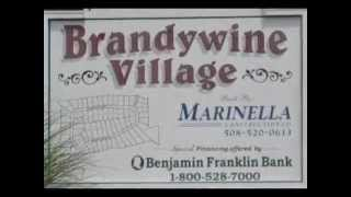 Brandywine Village Franklin MA neighborhood