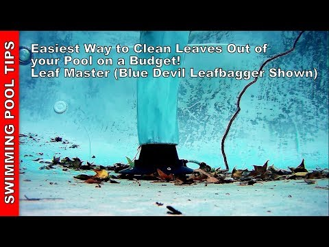 Easiest Way to Clean Leaves Out of your Pool on a Budget! Using a Leaf Master