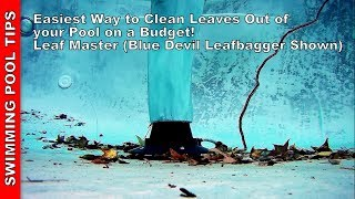 Easiest Way to Clęan Leaves Out of your Pool on a Budget! Using a Leaf Master