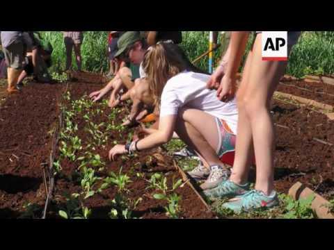 Organic farming provides fesh food in Cuba