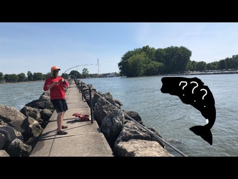 SURPRISE CATCH ON THE PIER AT LAKE ERIE!! (Part 2)